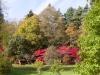 Autumn colours in the Cotswolds at Batsford Arboretum, Batsford Park, Gloucestershire