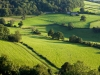 Evening sunlight on the foot of the Cotswold scarp at Coaley Wood viewed from Coaley Peak Picnic Site, Gloucestershire