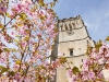 "Springtime at the Cotswold Wool Church of St Peter & St Paul at Northleach, Gloucestershire, England UK - The tower bells, via a carillon, on the hour at three, six, nine and twelve o'clock both day and night play three verses of ""Oh worship the King, All glorious above""' to the tune ""Hanover""."