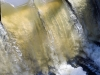 Water pouring over the weir at Cobham Mill on the River Mole, Cobham, Surrey