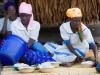 Women preparing nsima in the village of Nyombe, Malawi, Africa