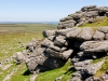 Haytor Rocks, a granite tor on Dartmoor, Devon, UK